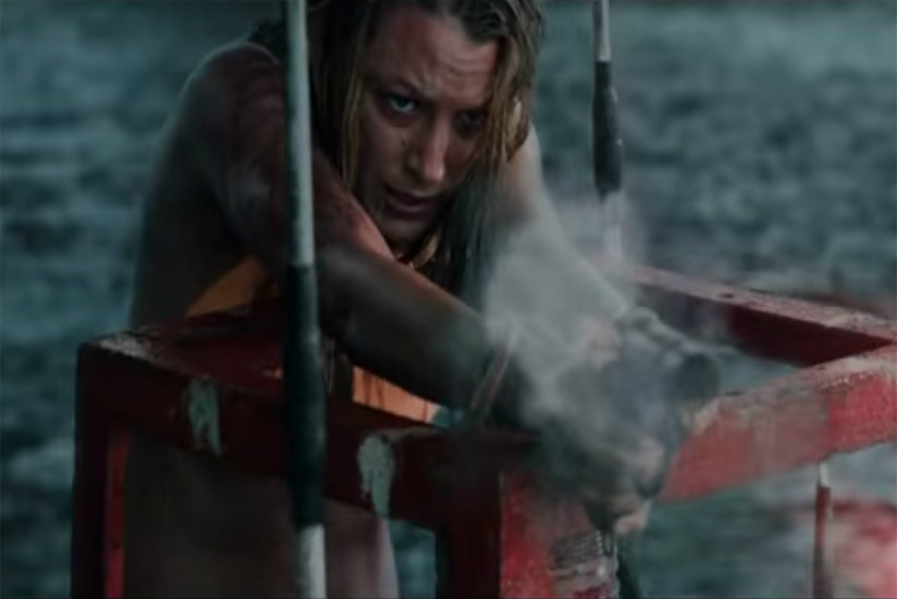 4. The Shallows, Nancy and flare gun