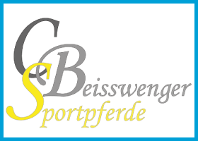 beisswenger-2015