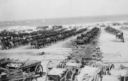 Scene overlooking New Zealand military transport at the camp in Alexandria, Egypt, during World War I. Shows horse-drawn vehicles in the foreground, with rows of horses feeding in the middleground, and tents in the distance. Photograph taken in 1915, by Laurie Mackie. © Alexander Turnbull Library