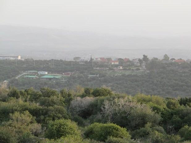 hoshvilim.com - יער ריחן
