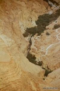 MIDBAR YEHUDA 2013-11-1 (51)