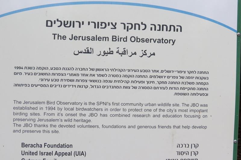 התחנה לחקר ציפורים