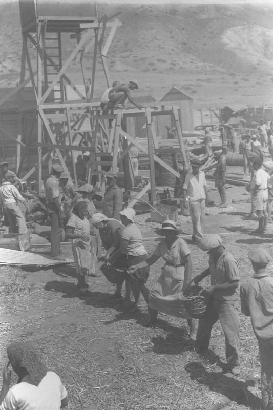 הקמת עין גב, 1937 יוצר:זולטן קלוגר