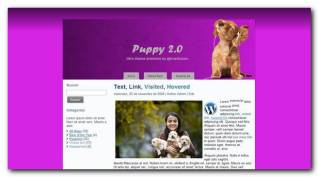 Puppy 2.0 nuevo theme premium gratis para WordPress