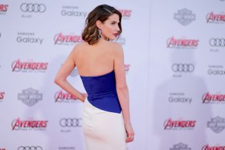 Cobie Smulders (3)