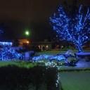 元町公園~青いイルミネーション