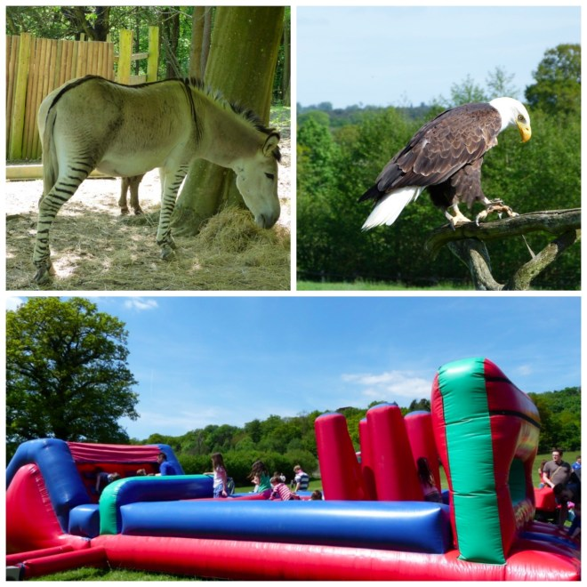 Other Groombridge attractions Collage