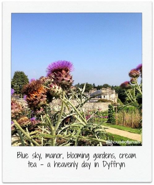 Dyffryn blooming wales