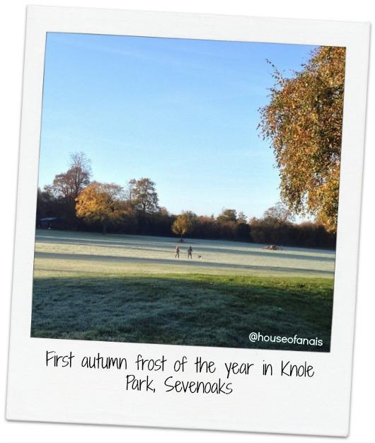 Sevenoaks autumn