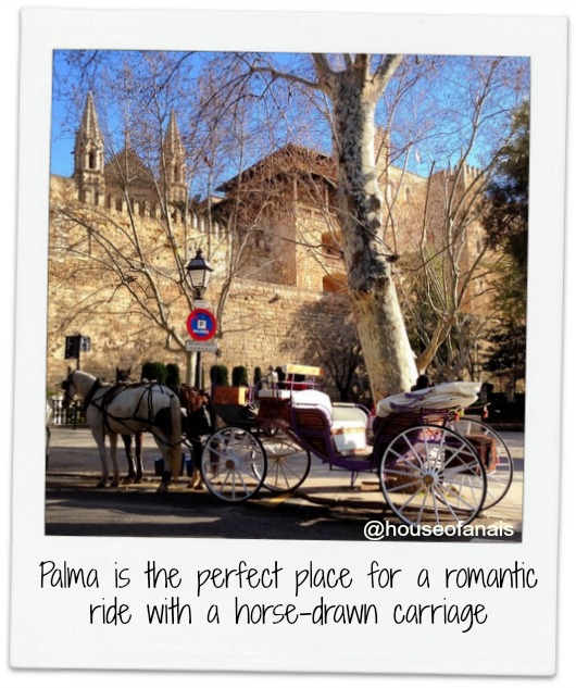 Horse Carriage in Palma