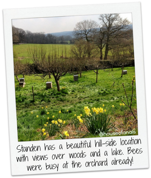 Standen bees and orchard