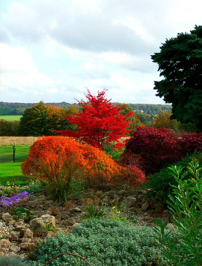 Glorious foliage in Emmetts Garden