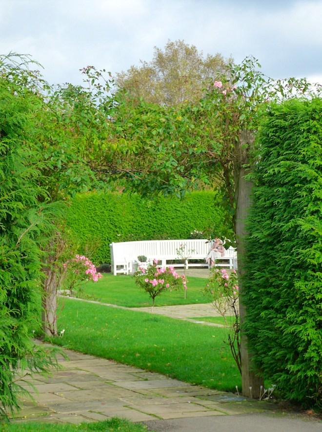 Last roses of Emmetts Garden