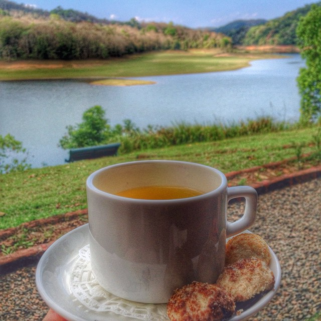 Cup of tea in Periyar Tiger Reserve