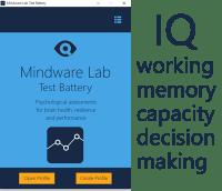 mindware lab test battery