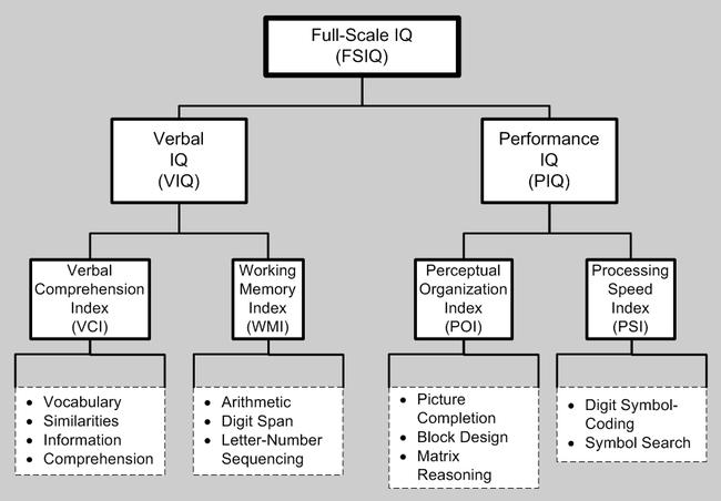 WAIS-IV IQ Test