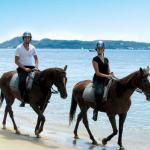 Horse Rides in Hua Hin