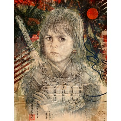 the look of the samurai print by hubert fine art