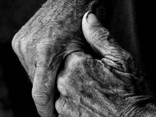 En homenaje a nuestros mayores