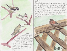 Image of Nature journal 2 by Kelly Brenner