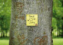 Сохраним природу с Post-it!