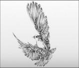 Иллюстрации чернилами от артстудии Si Scott Studio