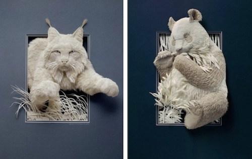 Галерея животных из бумаги от Кэлвина Николлса (1)