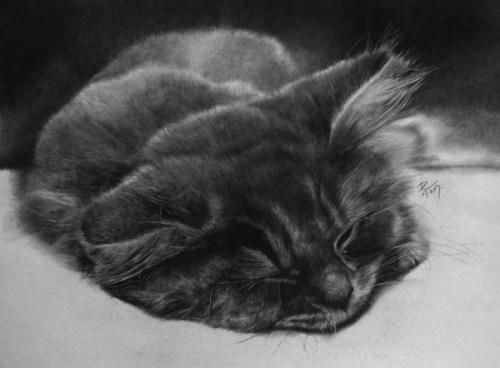 Картинки карандашом от Пола Ланга (16)