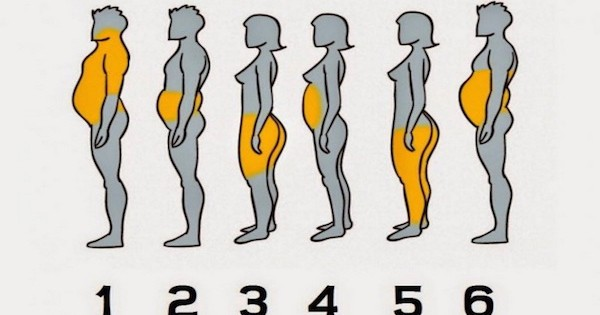 באיזה חלק בגופכם צובר שומן