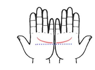 בעזרת קווי כף היד שלכם ניתן לתאר את האישיות שלכם