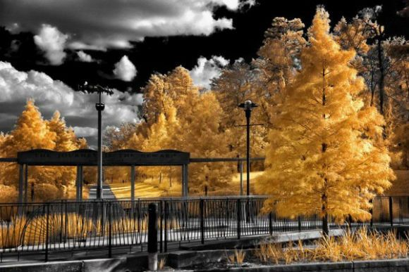 Infrared-Photography-24-600x400