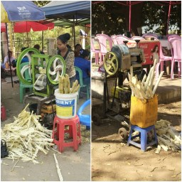 Sugar-Cane Juice. Healthy from old oil bins or paint buckets.