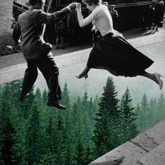 A vida é uma incerteza e o amor uma panaceia