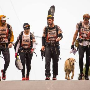 Stray Dog Follows Extreme Sports Team on 690km Journey