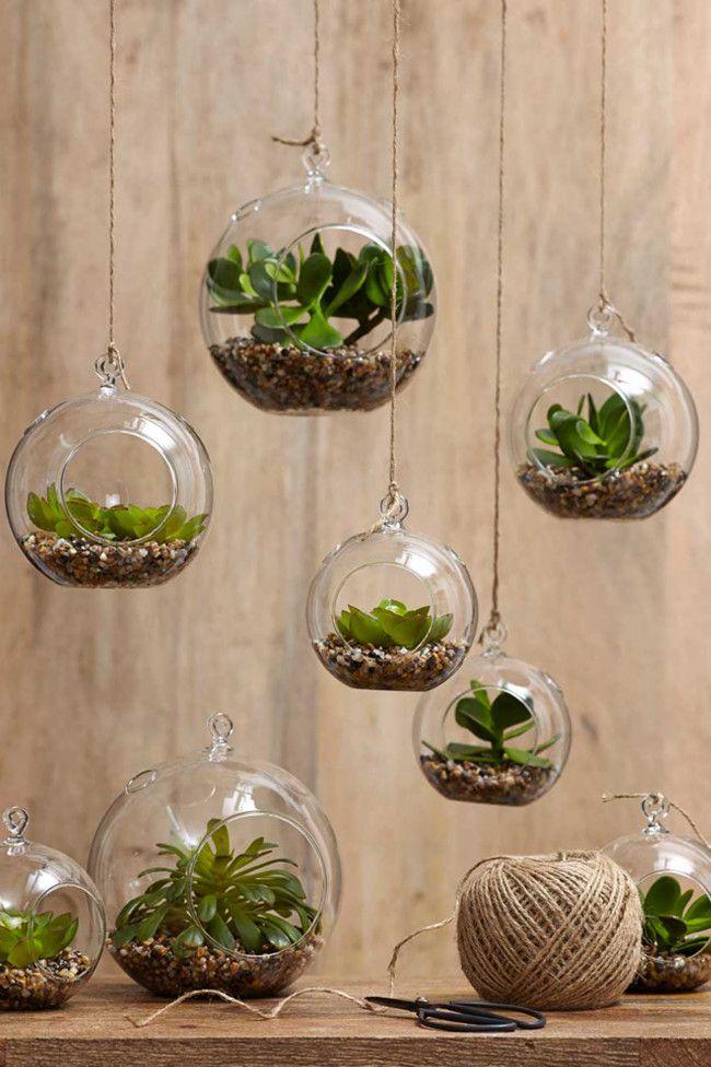 Diverso è invece scegliere le piante per un bagno piccolo : il loro ...