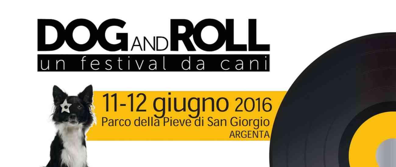 Dog and roll un festival da cani