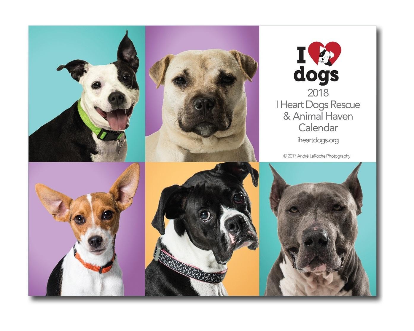 Fullsize Of I Heart Dogs