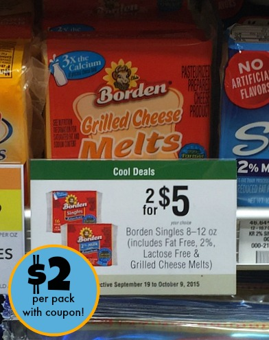 borden coupon publix
