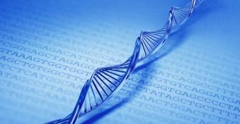 Open vacancy: Researcher in Bioinformatics