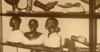 Fotografia do Museu de Anatomia Patológica de Moçambique