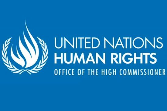 BM Irk Ayrımcılığının Ortadan Kaldırılması Komitesi'nin 35 No'lu Genel Tavsiye'si Türkçeye Çevrildi