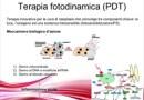I  meccanismi  d'azione  della  fototerapia dinamica  in  oncologia  dermatologica