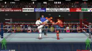 Karate Master 2 Knock Down Blow approda su Steam
