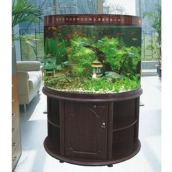 Fish Aquarium ? Buy Fish Aquarium, Price , Photo Fish Aquarium, from