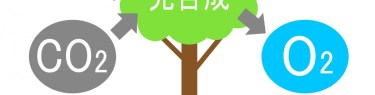pixta_4048711_M.jpg