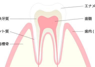 teeth1124