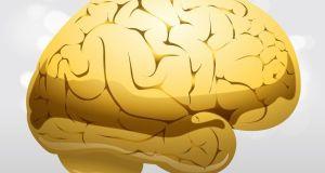 ways our brain works