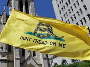 dont-tread-on-me-flag-AP
