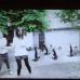 Top 3 Choreographed K-Indie Videos