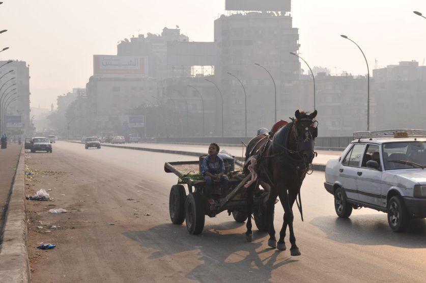 Mezzo di trasporto - Ponte del Nilo